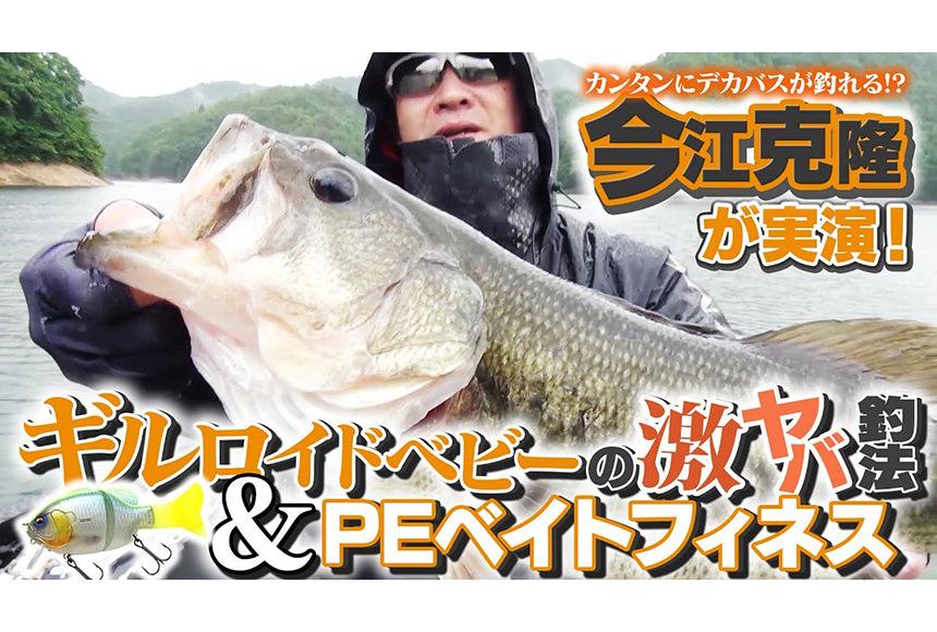 【カンタンにデカバスが釣れる!?】今江克隆が実演!「ギルロイドベビー」の激ヤバ釣法&PEベイトフィネス