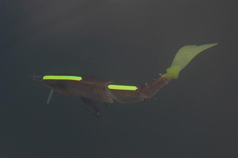 ウネウネブリブリと力強くジャバロンスイミングアクションをしてくれます